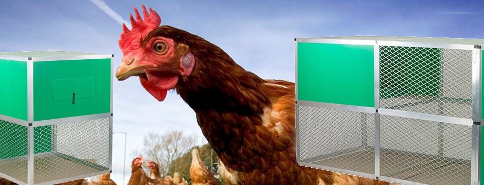 Revolutionary New Chicken Coop